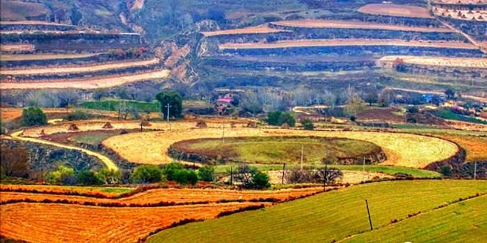 甘肃环县:黄土地的秋色美如画