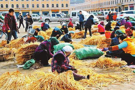 定西岷县中药材收入占农民人均可支配收入60%以上