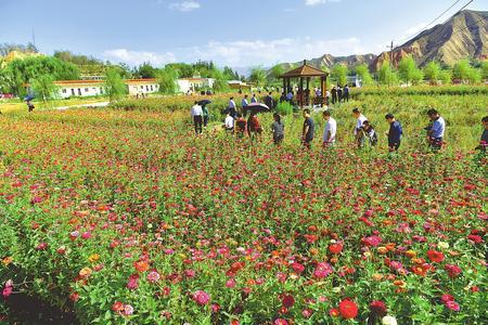 改造治理后的白银金大沟强湾村风景如画,吸引了众多游客.