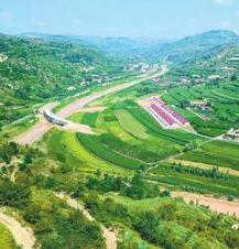 药草飘香致富路——庆阳市中药材产业发展情况调查