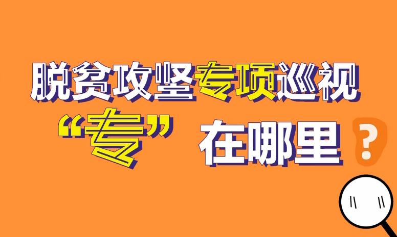 """【短视频】脱贫攻坚专项巡视""""专""""在哪里?"""