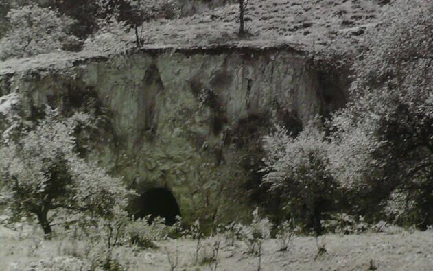 刘志丹、习仲勋在寨子湾住过的窑洞
