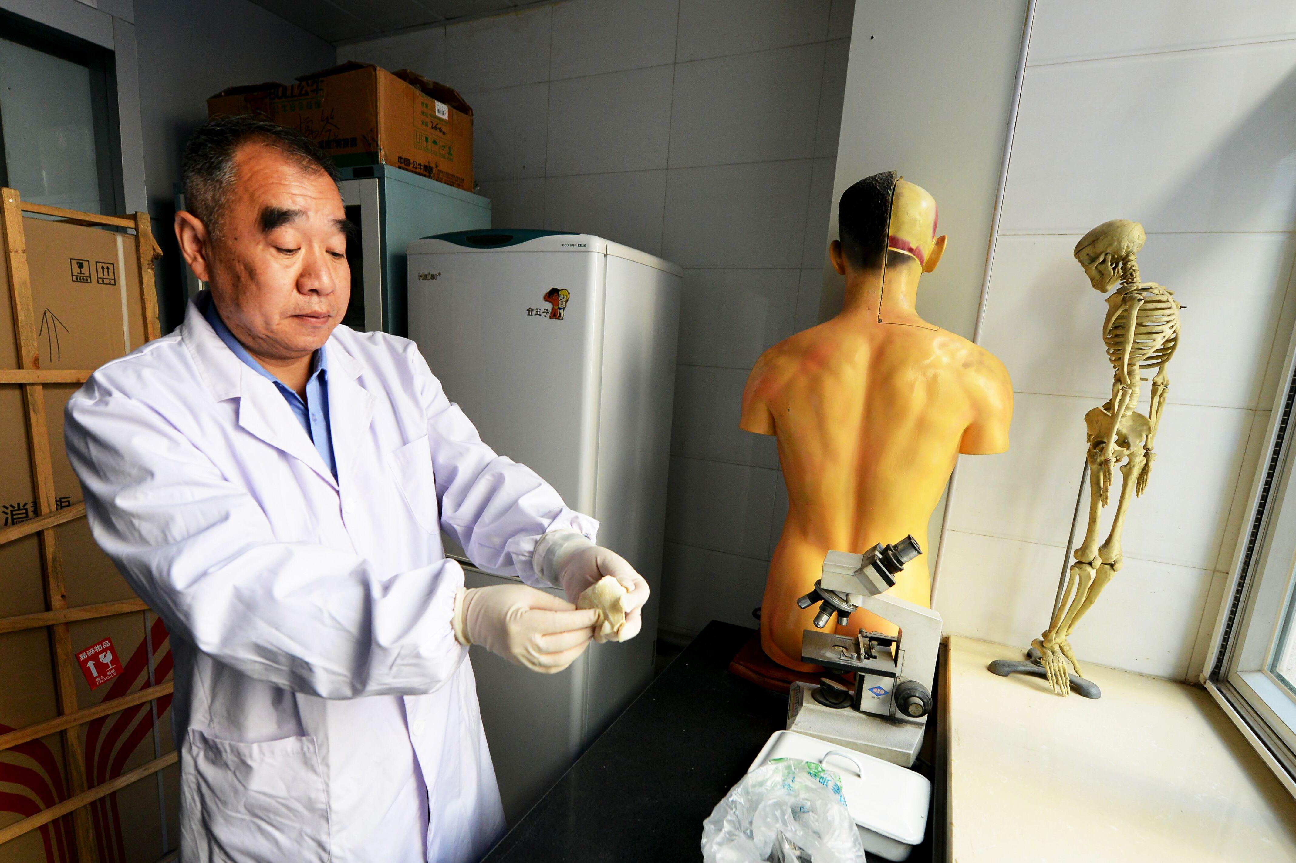 法医陈亚平:坚守正义 助力破案维护公民生命健康权