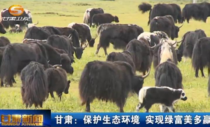 甘肃:保护生态环境 实现绿富美多赢