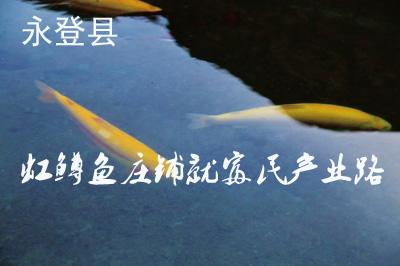 庄浪河边渔歌欢——怎样网上挣钱永登县虹鳟鱼庄铺就富民财产路