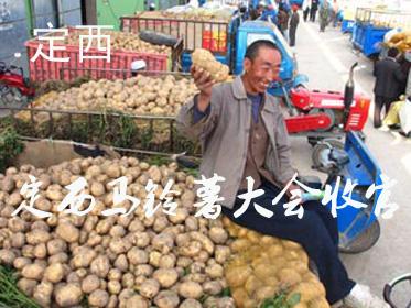 2018中国·定西马铃薯大会圆满收官