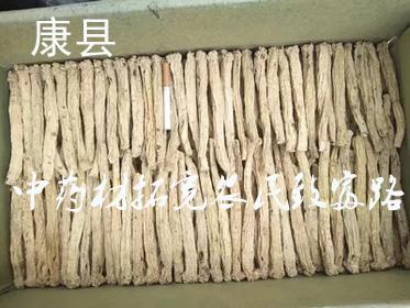 甘肃康县:中药材种植拓宽农民致富路