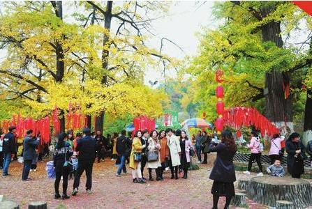 陇南徽县金秋赏叶文化旅游节举行(图)