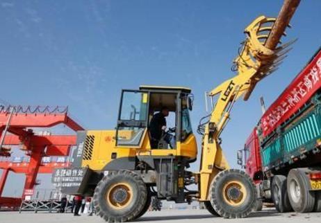 首单1000方俄罗斯进口原木运抵兰州新区