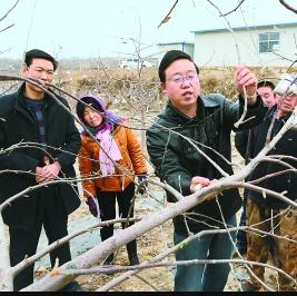 【农业】中央拨款1.05亿元扶持我省农民合作社建设