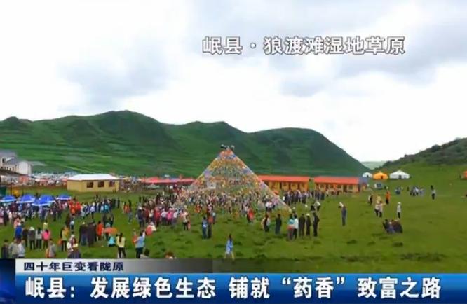 """定西岷县:生长绿色生态 铺就""""药香""""致富之路"""