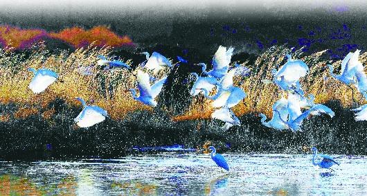 酒泉肃北县不断加大生态环境保护和治理力度(图)