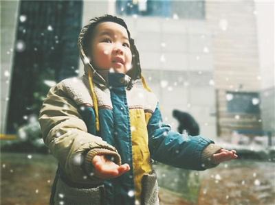 雪落金城 分外妖娆 兰州迎来今冬第一场鹅毛大雪