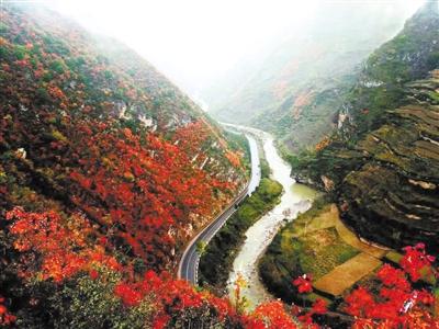 【西部地理】康县花桥村:品味恬静乡村的山水雅意