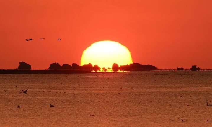 日出天鹅湖