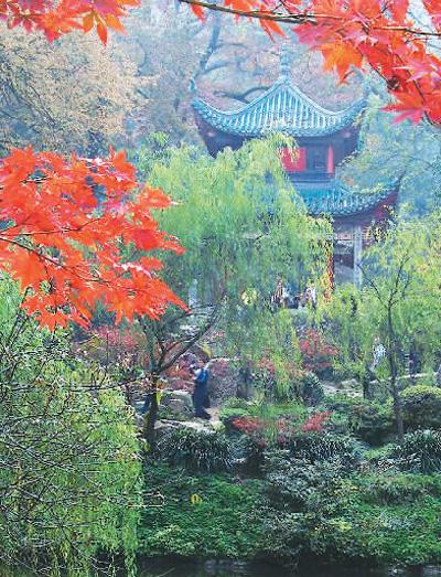 美图美景:岳麓山赏红叶