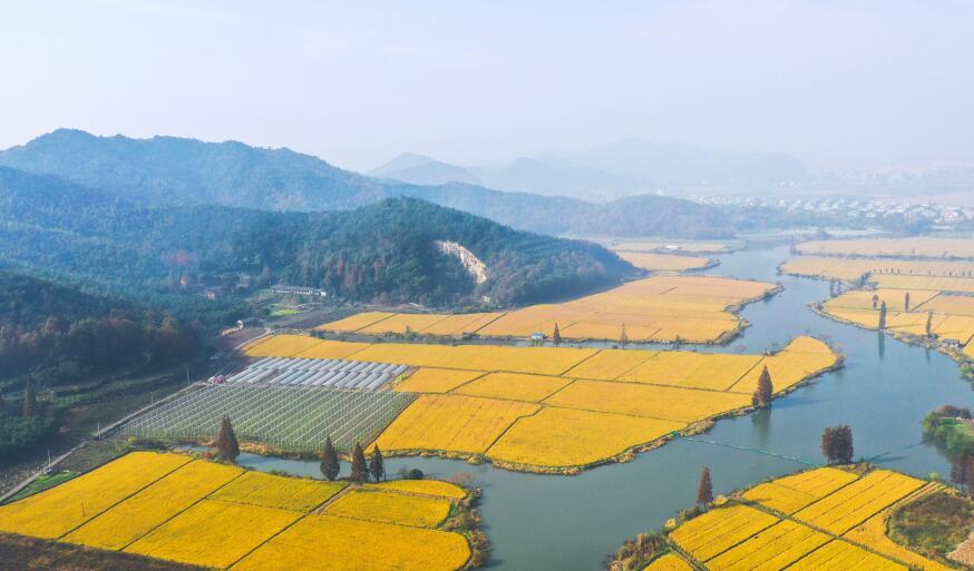 宁波:雾漫东钱湖