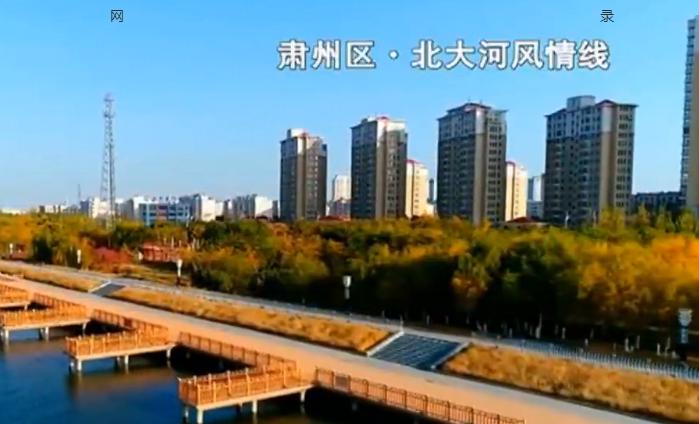 """酒泉市肃州区:戈壁滩上""""点石成金"""" 生态建设""""绿意盎然"""""""
