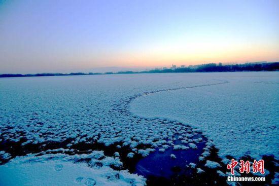 """甘肃戈壁湿地冰面""""雪处疑花满"""""""