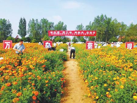 对标提质强根基 ——庆阳镇原县推进党支部建设标准化侧记