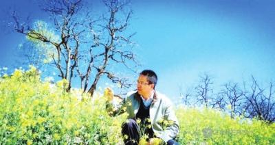 改革开放为我提供出彩的舞台——记甘肃省杂粮育种专家杨天育