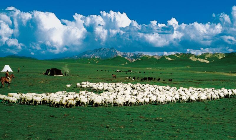 甘肃改革开放40年回眸|生态文明建设