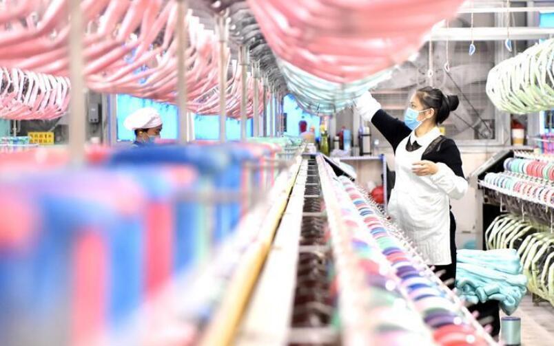 广西宜州:桑蚕产业助力乡村振兴