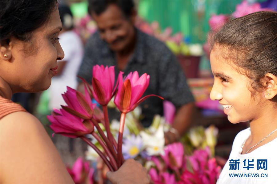 (XHDW)(2)科伦坡:新年伊始 鲜花祈福