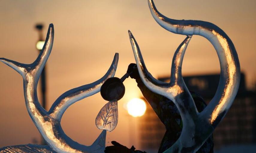 哈尔滨国际冰雕比赛:初露芳容