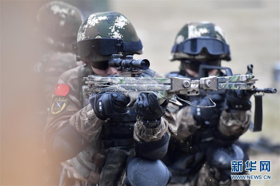 (军事)(5)福建武警:特战训练砺精兵