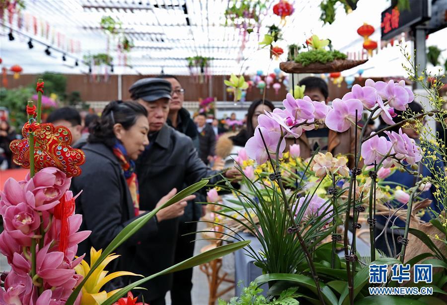 (社会)(3)北京:年宵花卉迎春节