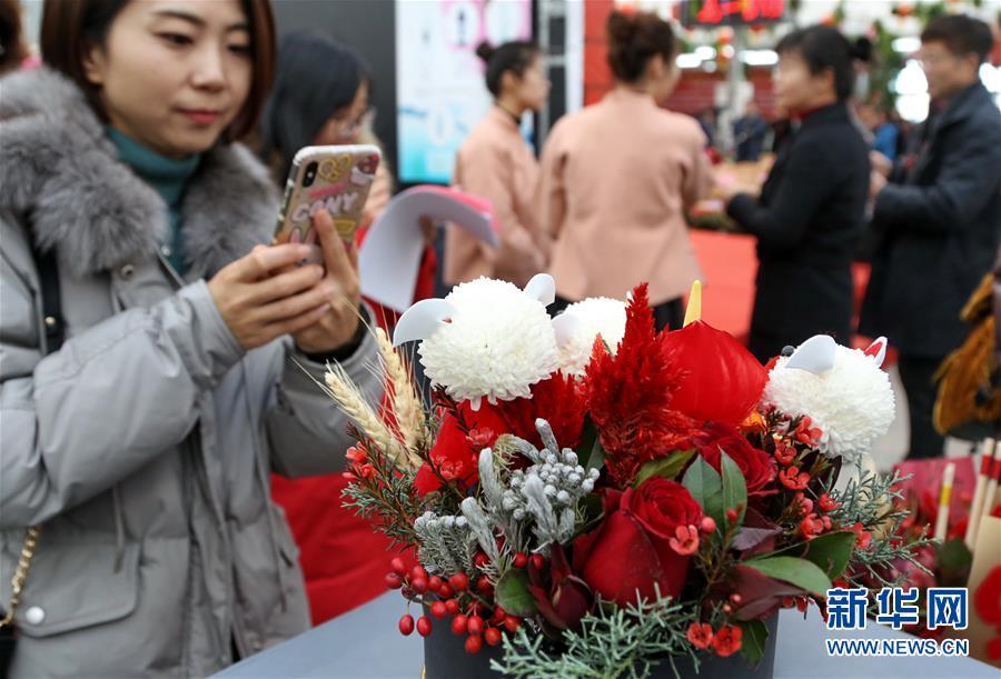 (社会)(4)北京:年宵花卉迎春节