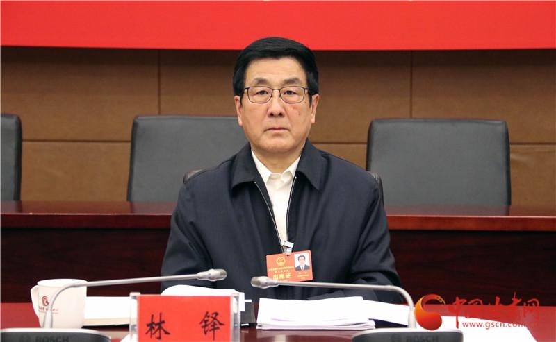 【小陇跑两会】履职尽责 省人大代表认真审议《政府工作报告》 (组图)