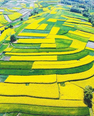 甘肃聚焦绿色发展 十大生态产业增速加快