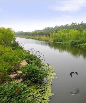 去年甘肃省整改落实河湖生态问题2005个
