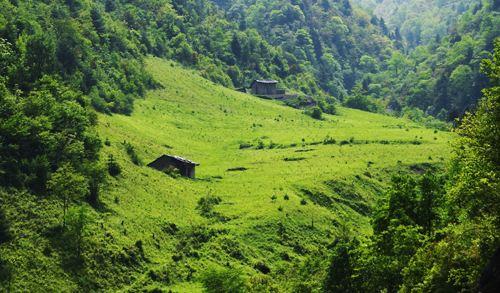 甘肃省发改委印发《意见》提出 2020年形成有利于绿色发展的价格机制