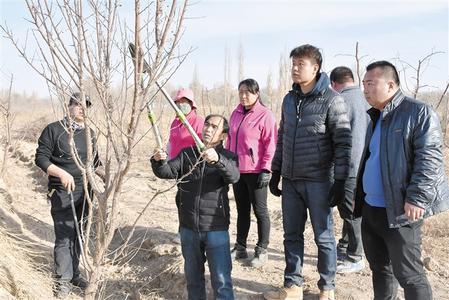 酒泉市敦煌:新一年春耕开始 人们走进田间地头