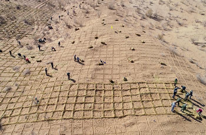 【飞阅甘肃】张掖临泽:植树固沙 绿洲逼退荒漠11公里