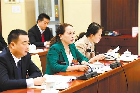 """出席十三届全国人大二次会议的甘肃代表团继续审议""""两高""""工作报告(图)"""