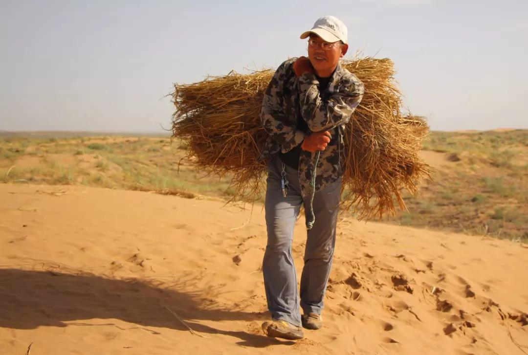 八步沙林场第二代治沙人程生学
