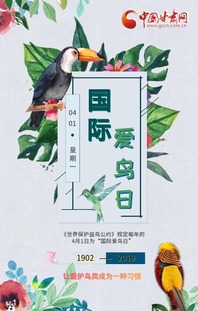 国际爱鸟日