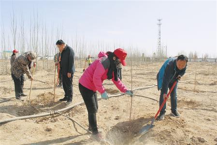 【陇原春光好 干群植树忙】酒泉市肃州镇党员干部在戈壁农业示范园区开展义务植树活动