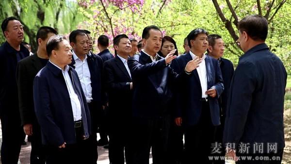 麦积区领导督查马跑泉公园郁金香花卉展布展情况