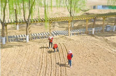 兰州银滩湿地公园工作人员正在进行整修和绿化工作(图)
