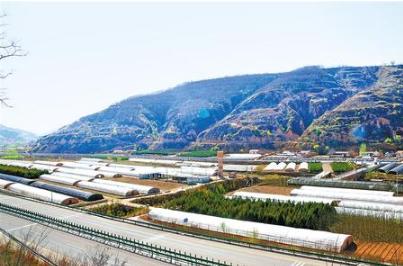 庆阳合水县:合力拓宽小康路(图)