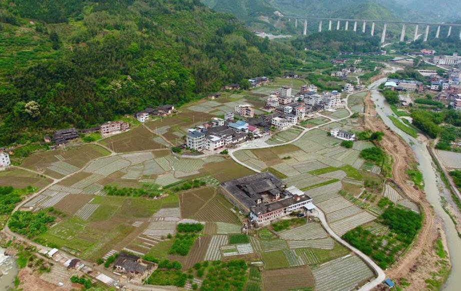 福建永泰:花生种植助农增收