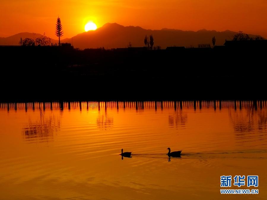 甘肃张掖戈壁湿地晚照 春水共长天一色