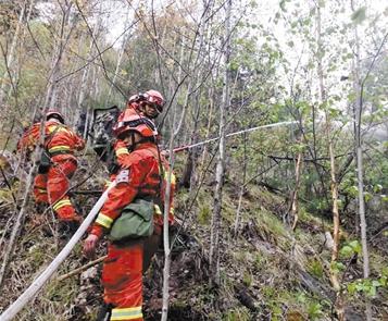 甘南州迭部县桑坝乡附近发生森林火灾 林铎唐仁健作出批示