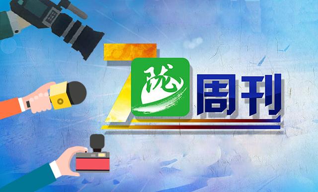 陇周刊(2019年 第14期)