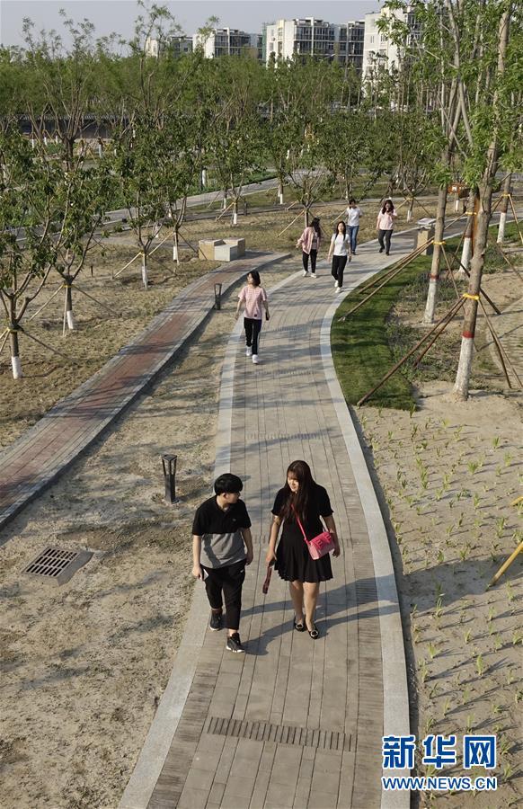 (社会)(3)旧市场变身新公园